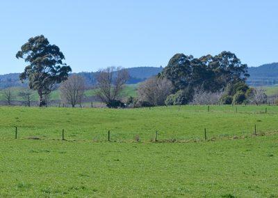 Farm hills