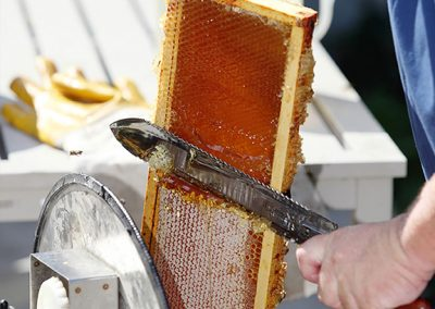 Slicing honey
