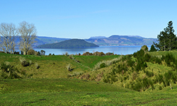 Looking over hills to Lake Rotorua