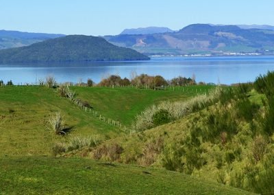 Farm Lake Mokoia