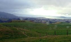 Rainy day over Rotorua